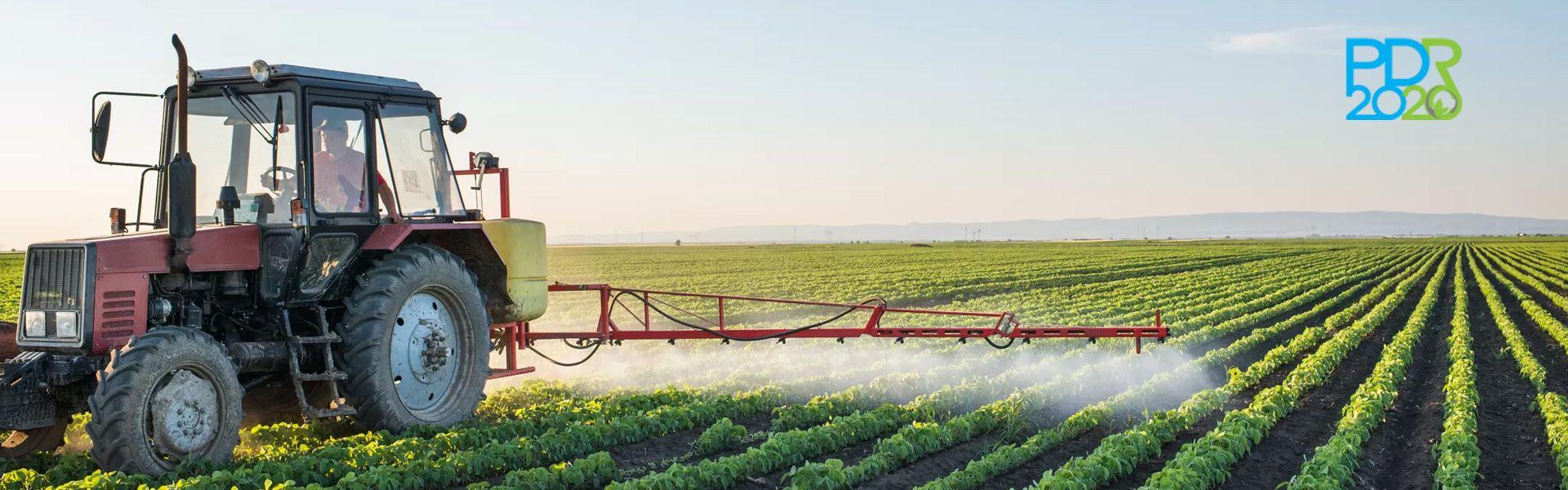 Projectos Agricolas